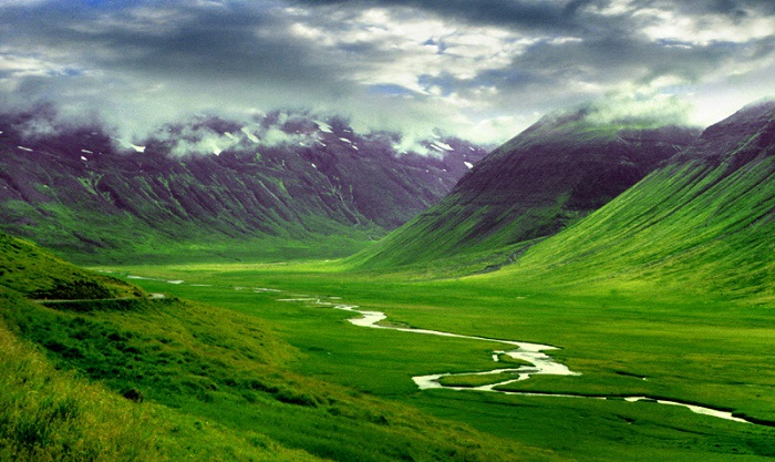 Iceland – the land of greenery