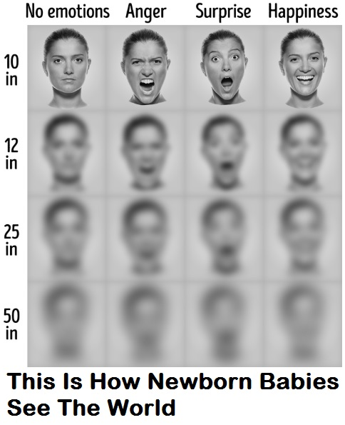 This is how newborn babies see the world