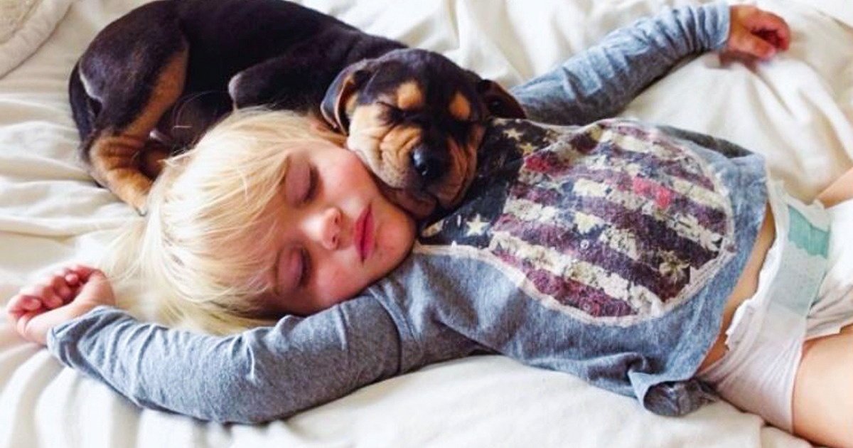 8 Things That Happen To Your Body And Mind When You Share Bed With Your Dog